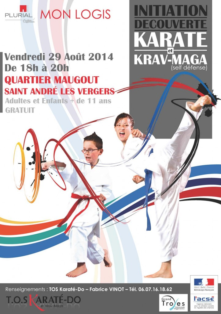karate_St_Andre2014_web